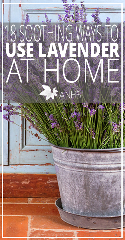 18 Soothing Ways to Use Lavender at Home - All Natural Home and Beauty