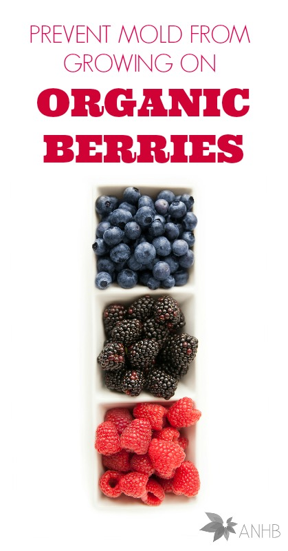 How to prevent mold from growing on organic berries. I needed this!