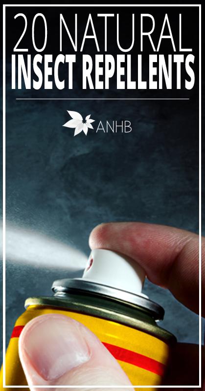 20 Natural Insect Repellents - AllNaturalHomeandBeauty.com Pin