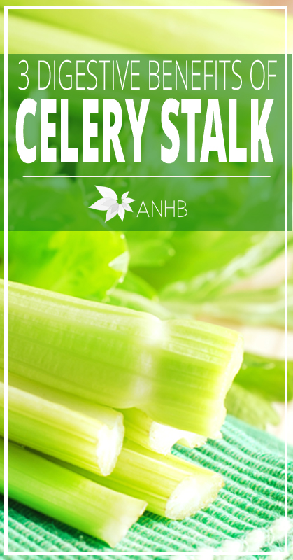 3 Digestive Benefits of Celery Stalk - All Natural Home and Beauty