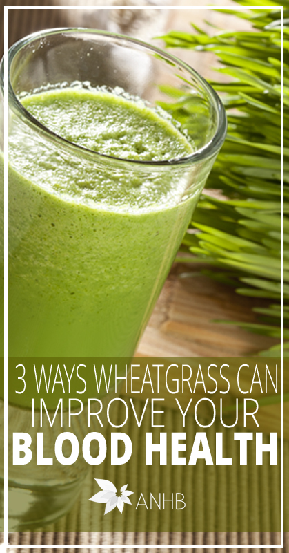 3 Ways Wheatgrass Can Improve Your Blood Health - All Natural Home and Beauty