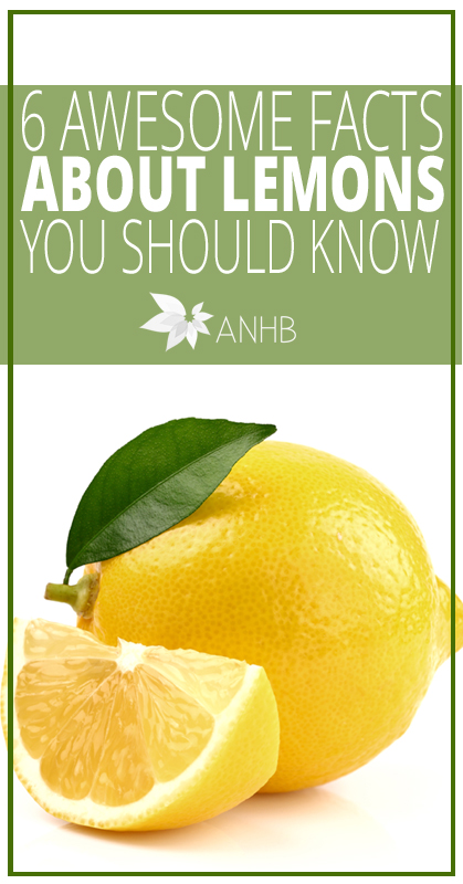 6 Awesome Facts About Lemons You Should Know - All Natural Home and Beauty