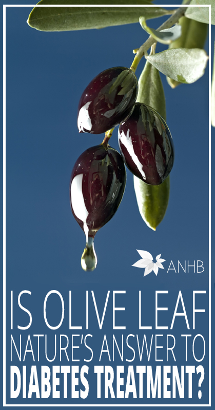Is Olive Leaf Nature's Answer to Diabetes Treatment - All Natural Home and Beauty