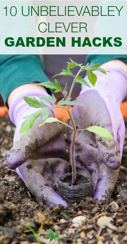 10 Unbelievably Clever Garden Hacks #gardening #health